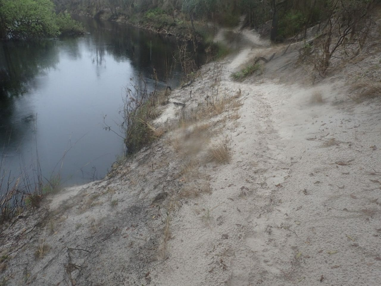 Florida Trail Suwannee River