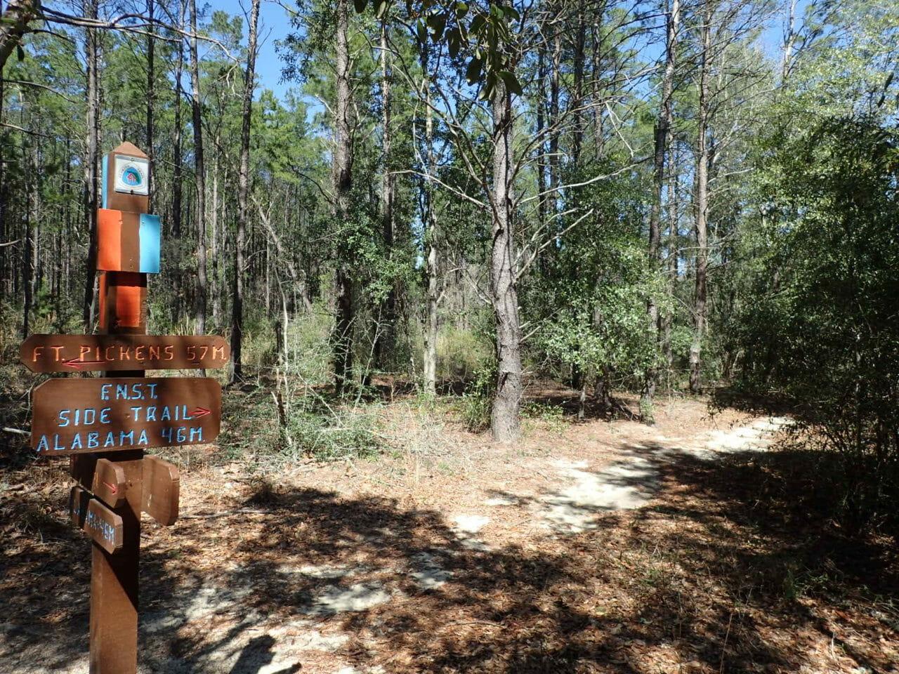 Florida Trail Deer Lake junction