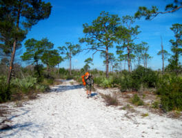Florida Trail, Ocean to Lake