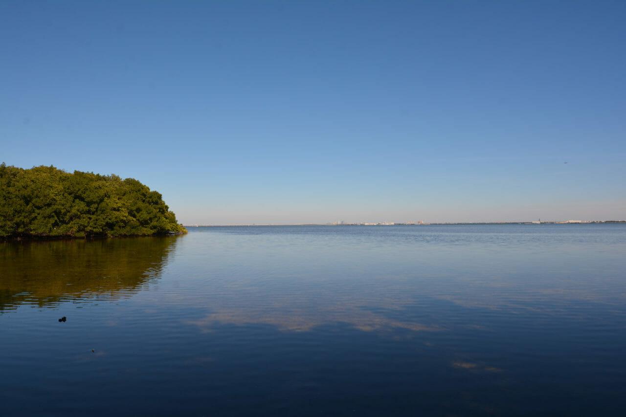 Weedon Island Preserve Overlook Trail