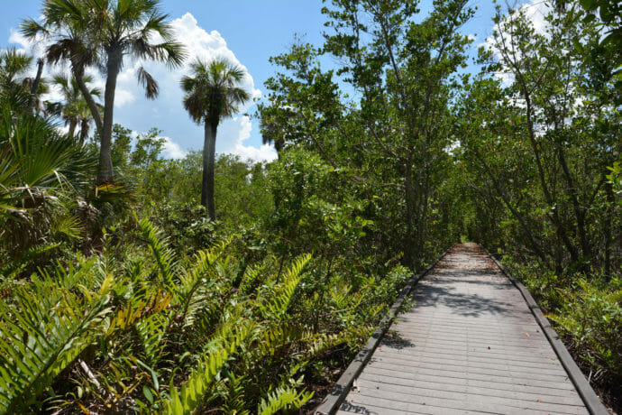 Barrier Island Trail