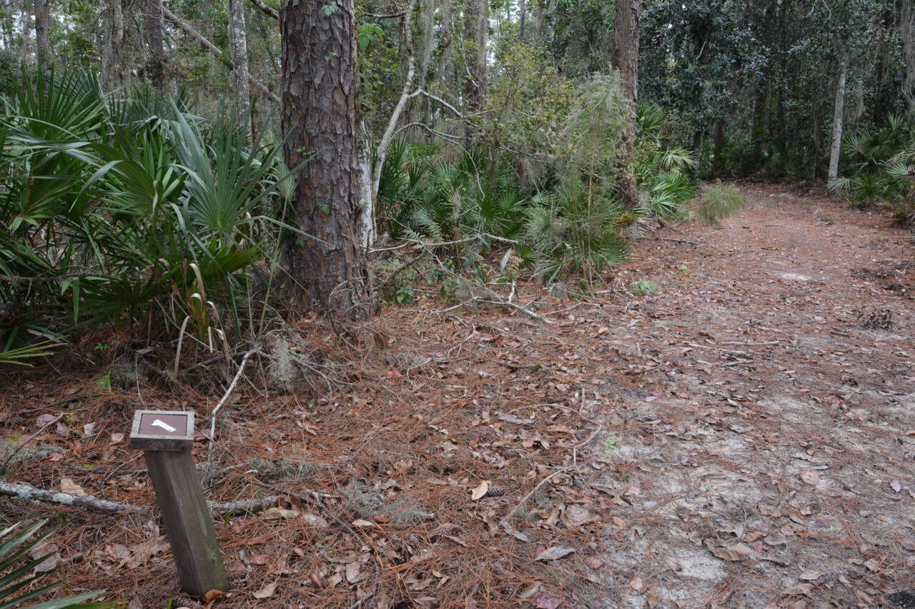 Beecher Run Nature Trail