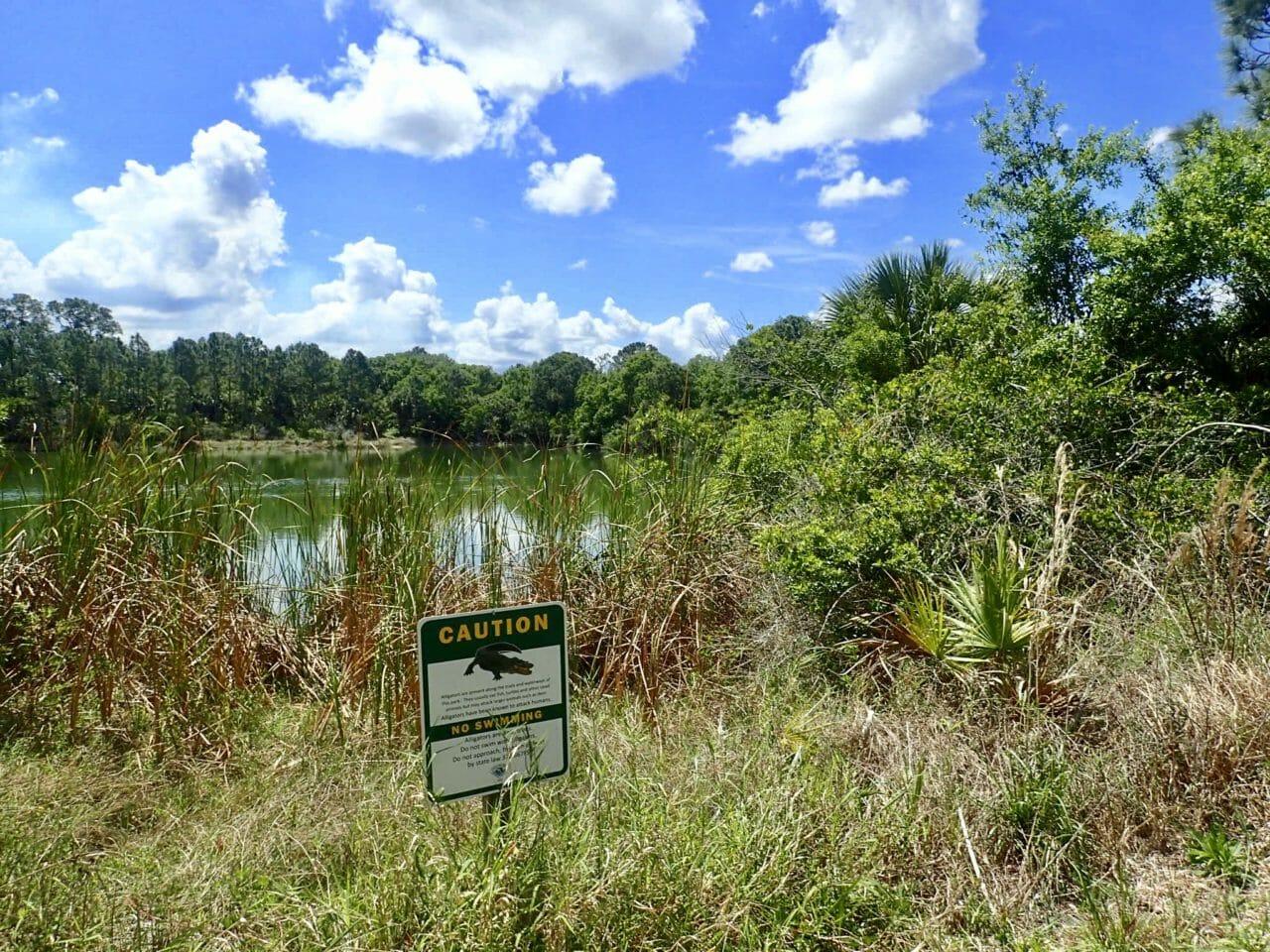 Alligator warning sign