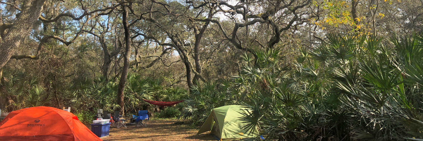 Car Camping in Florida | Florida Hikes!