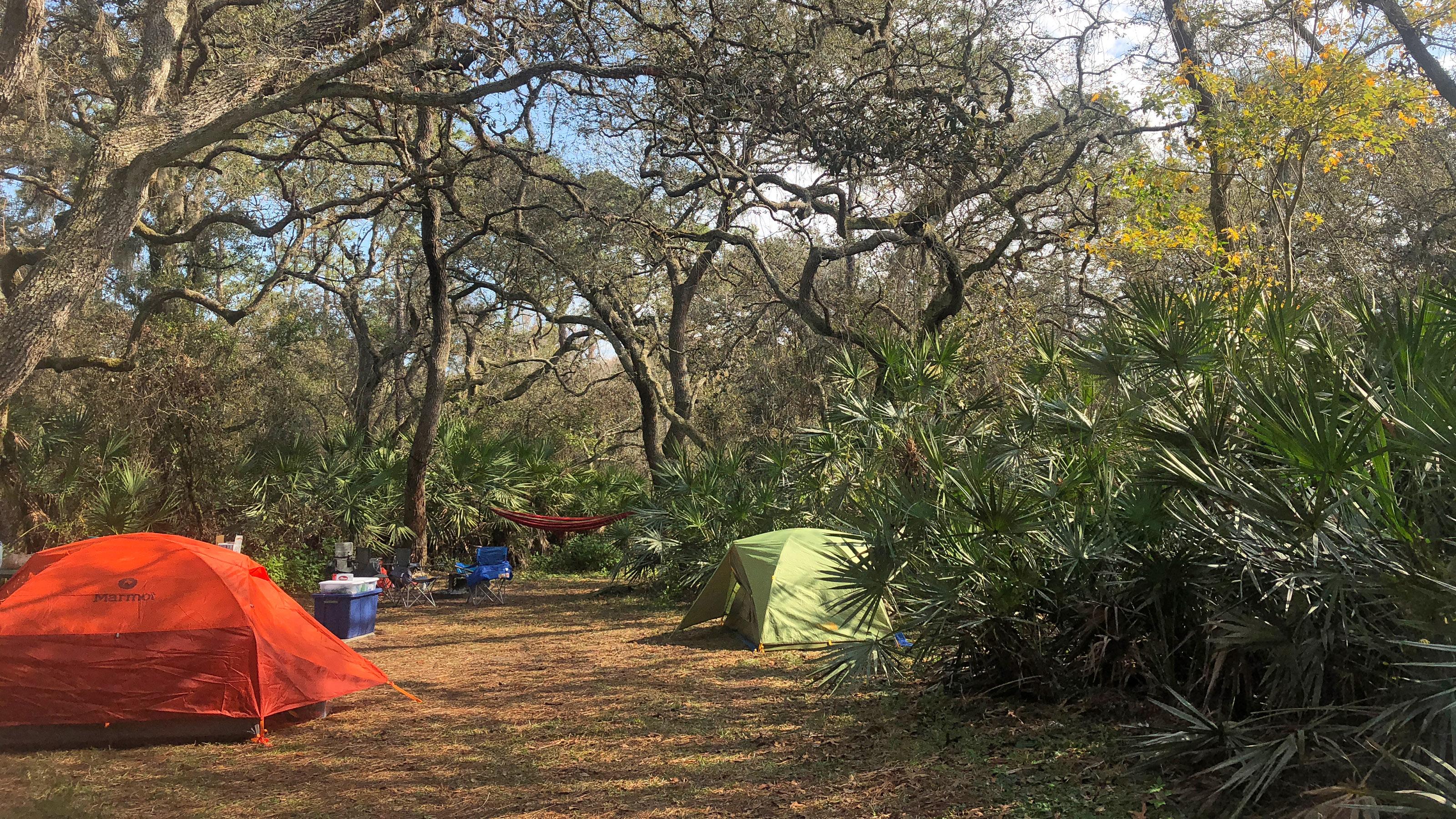 4035cf11a8 Car Camping in Florida | Florida Hikes!