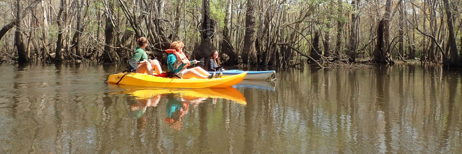 Kayaking Holmes Creek