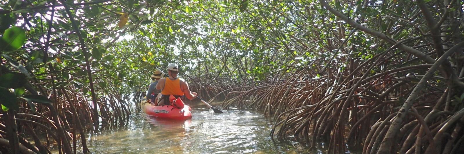 Key West Ecotours