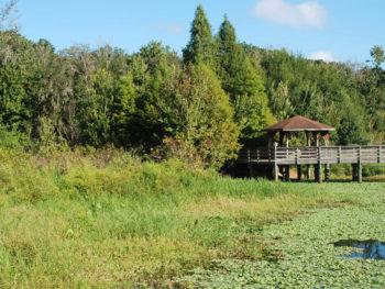 Lake Lotus Park