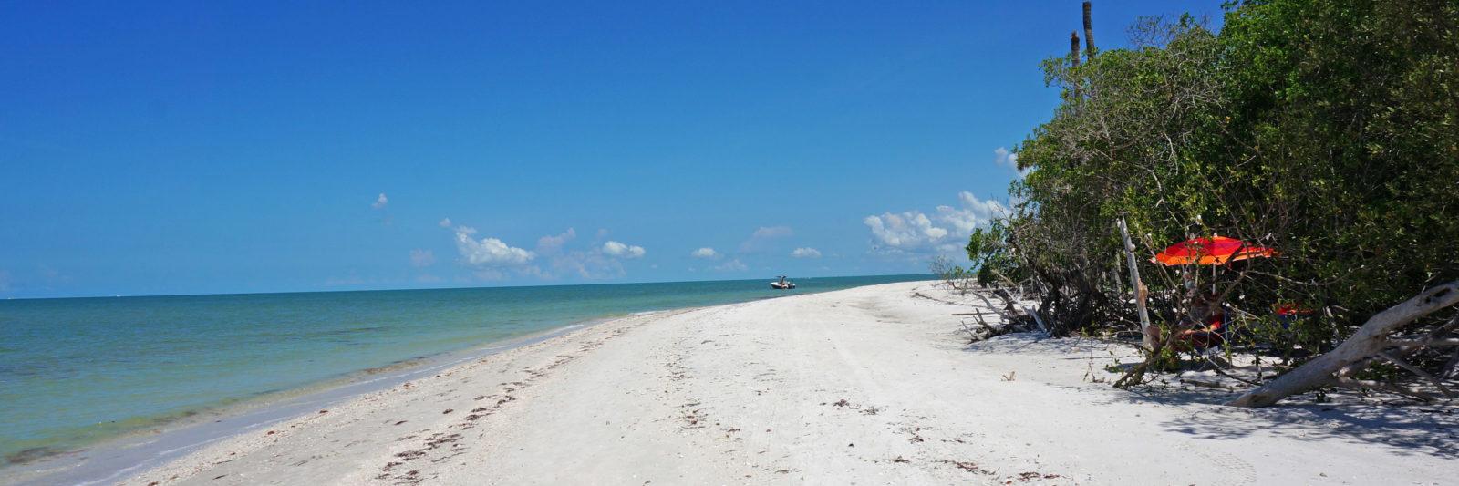 Naples Barefoot Beach