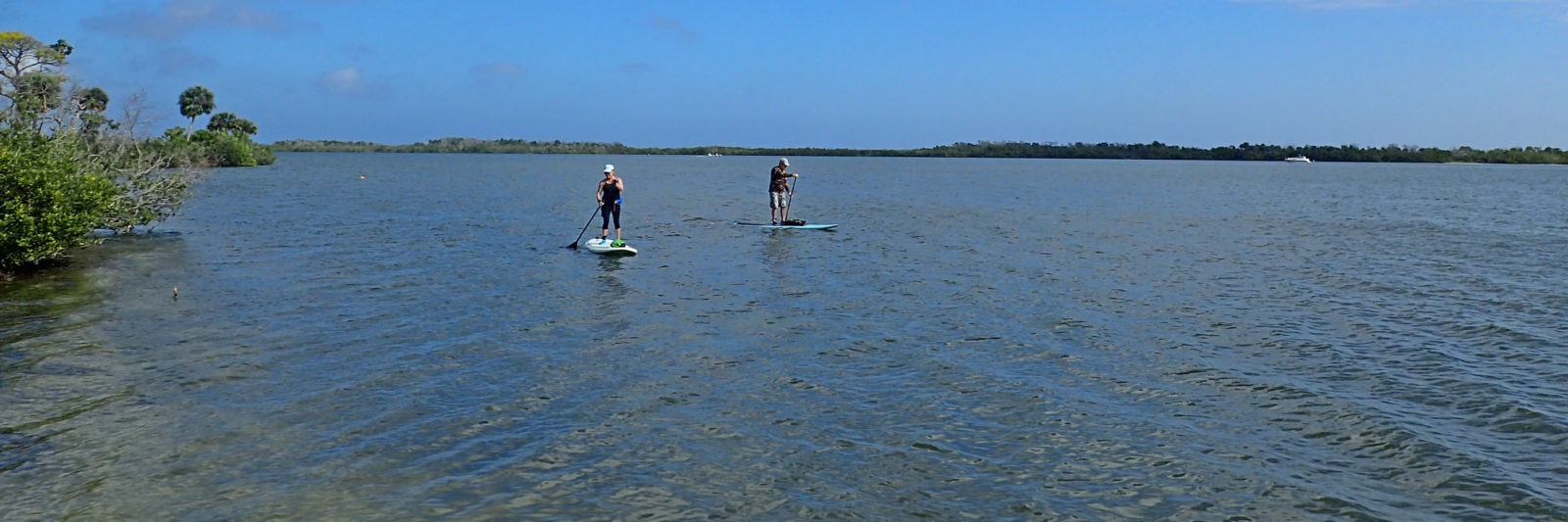 Paddleboarders on Mosquito Lagoon