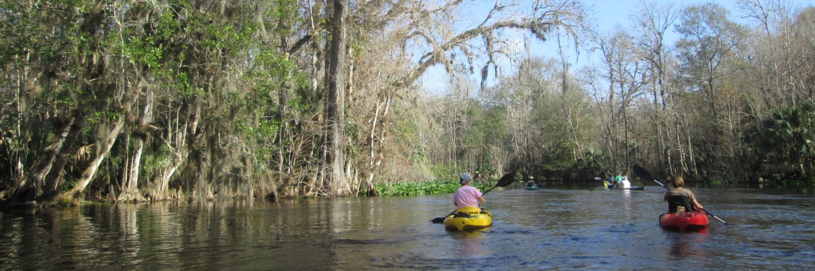 Paddling in Florida | Florida Hikes!