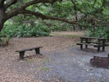 Rattlesnake Hammock campsite at KICCO