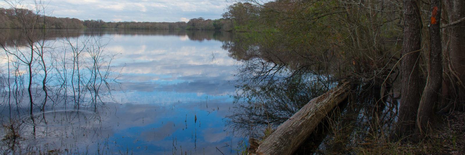 Silver Lake at Croom