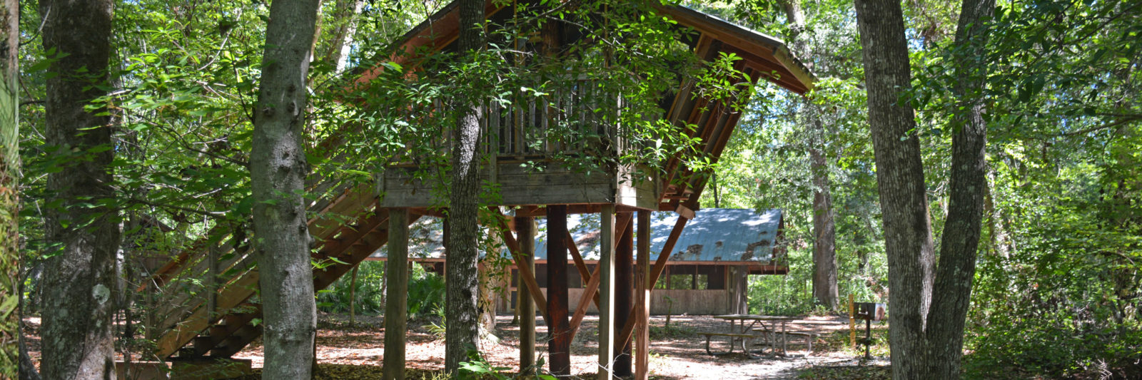 Treehouse at Camp Chowenwaw