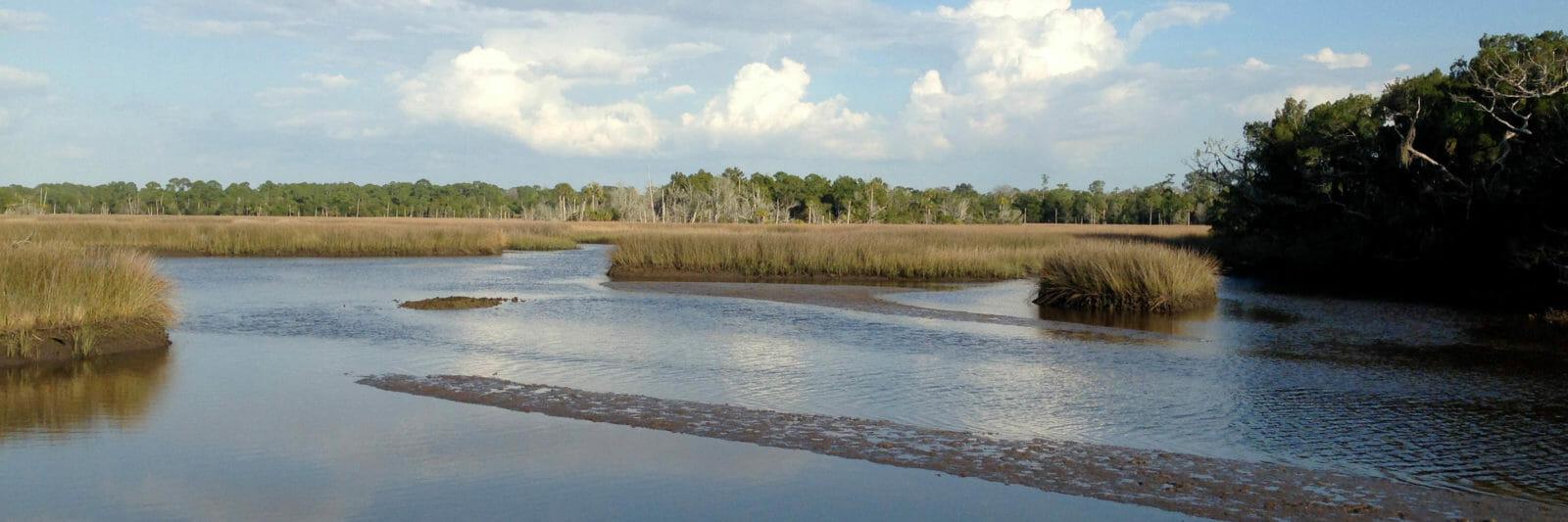 Yankeetown Withlacoochee Gulf Preserve