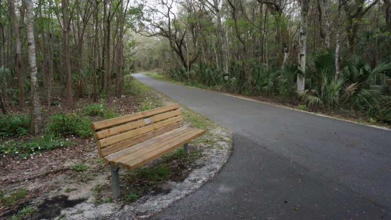 Bench at Dunnellon Trail junction