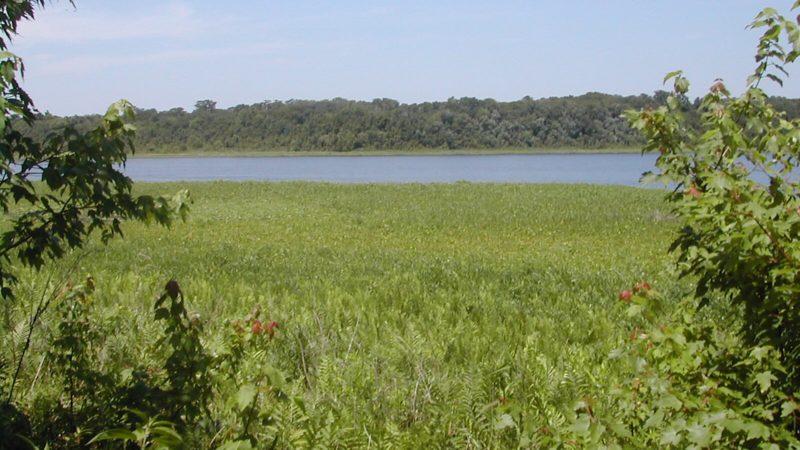 Chacala Pond