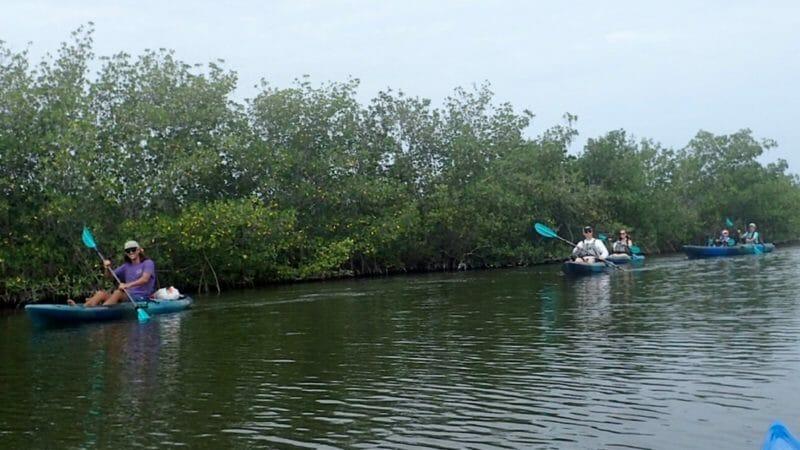 Ecotour Thousand Islands