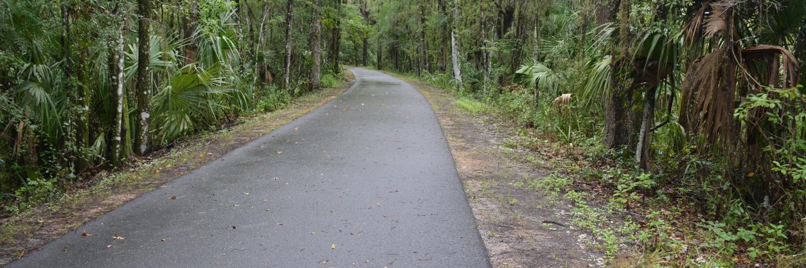 Florida Trail blaze on Dunnellon Trail