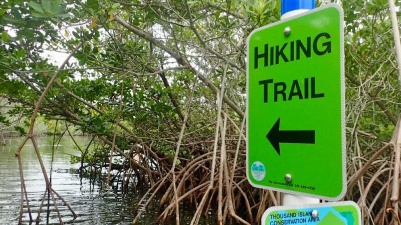 Hiking trail sign in mangroves