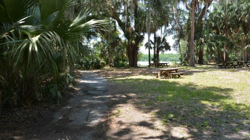 Lake Trail old picnic area
