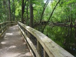 Prairie Creek Boardwalk
