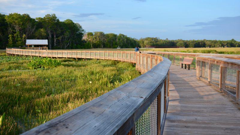 Sweetwater Wetlands boardwalk
