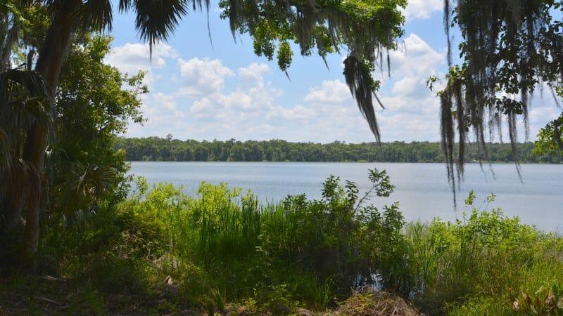 View of Lake Wauberg