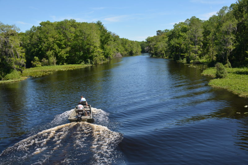 Withlacoochee River from the Dunnellon Trail