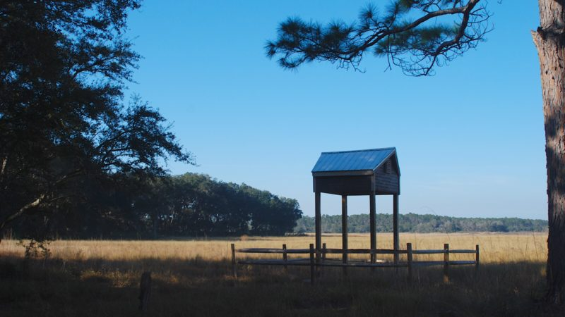 Hopkins Prairie Campground