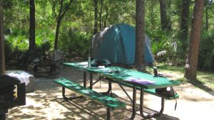 Juniper Springs Campground