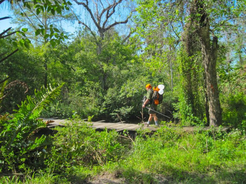Cypress Creek Loxahatchee