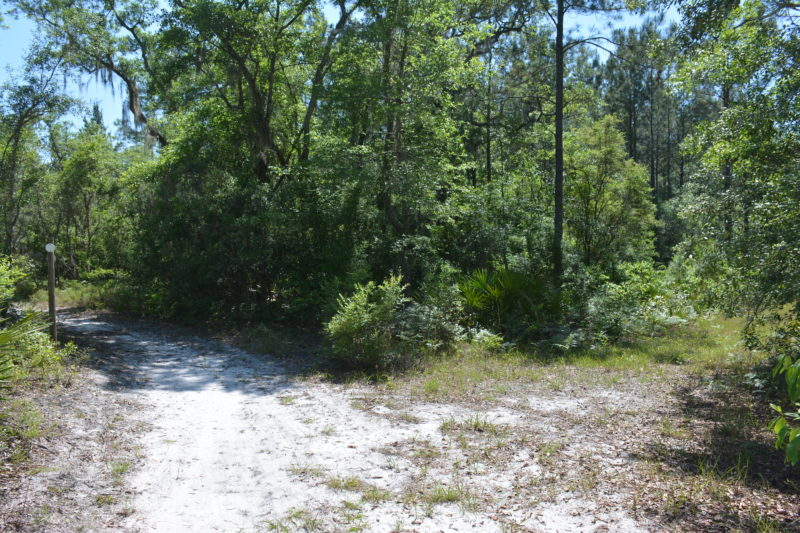 White Springs Tract