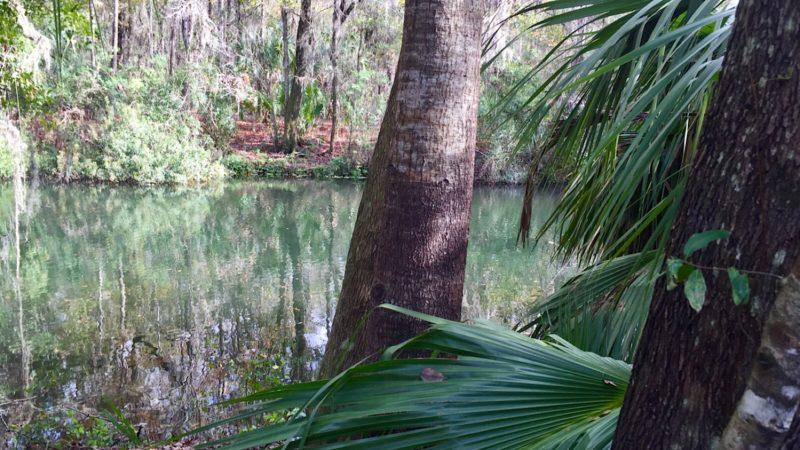 Blue Run Park oxbow pond