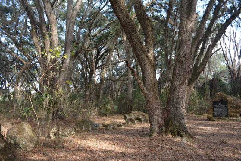 Florida Trail Pruitt Stonehenge