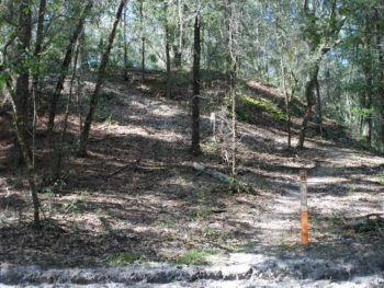 Florida Trail Pruitt switchback