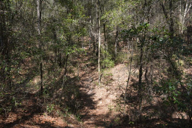 Florida Trail steep descent Shangri-La