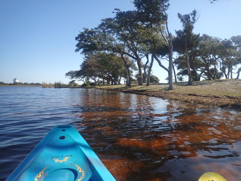 Lake Shelby Gulf State Park