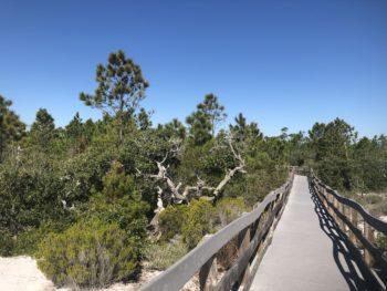 Perdido Key Discovery Trail