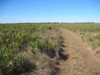 Prairie Loop Trail