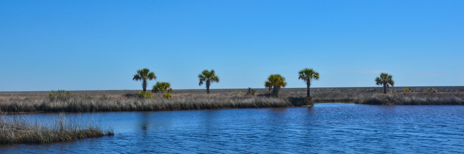 Florida Circumnavigational Trail St Marks