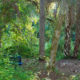 LaBelle Nature Park bench