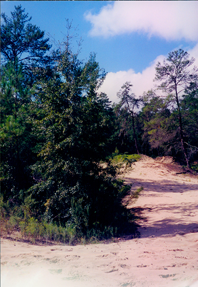 Barge canal diggings near I-75, 1999