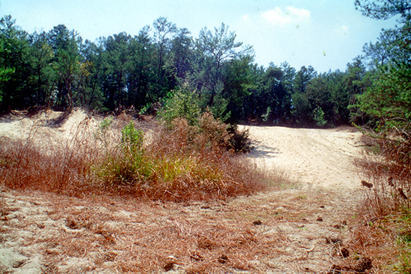 Barge canal diggings near I-75, 2000