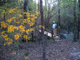 Calhoun, Chipola, and the Altha Trail