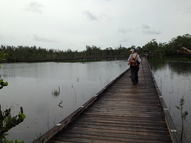 The longest boardwalk at Apoxee