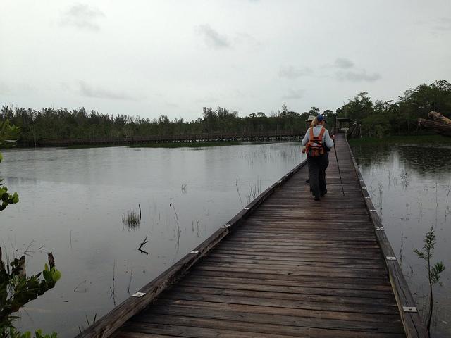 The longest boardwalk at Apoxee