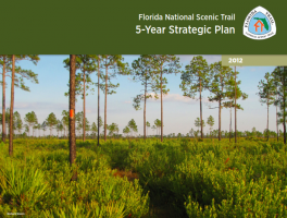 2012 FNST Strategic Plan Released