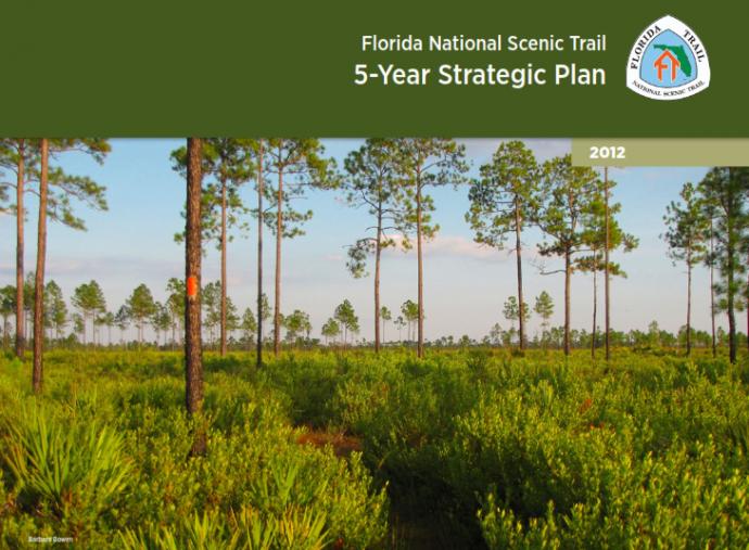 FNST-Strategic-Plan