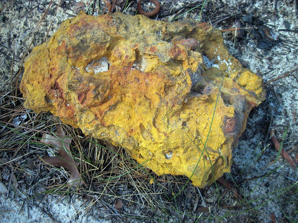 Hutton sandstone